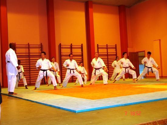 NUIT DES ARTS MARTIAUX A BIESHEIM 2008